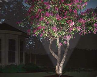Landscape lighting img