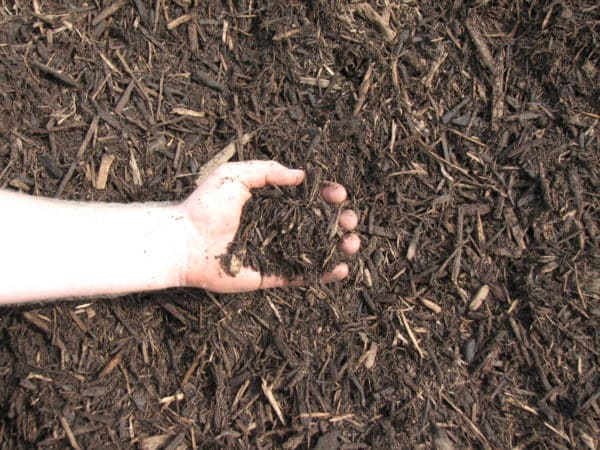Premium Natural Mulch 1