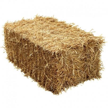 Straw Bale 1