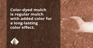 Mulch:  Everything You Need To Know For 2020 3