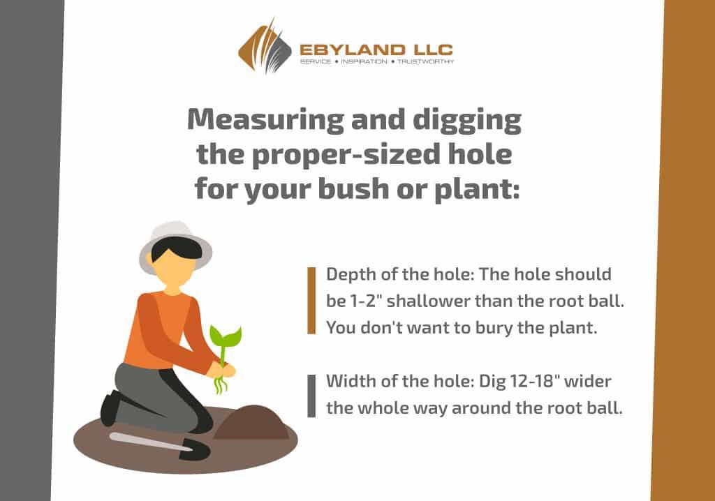 measuringanddiggingthepropesizedhole
